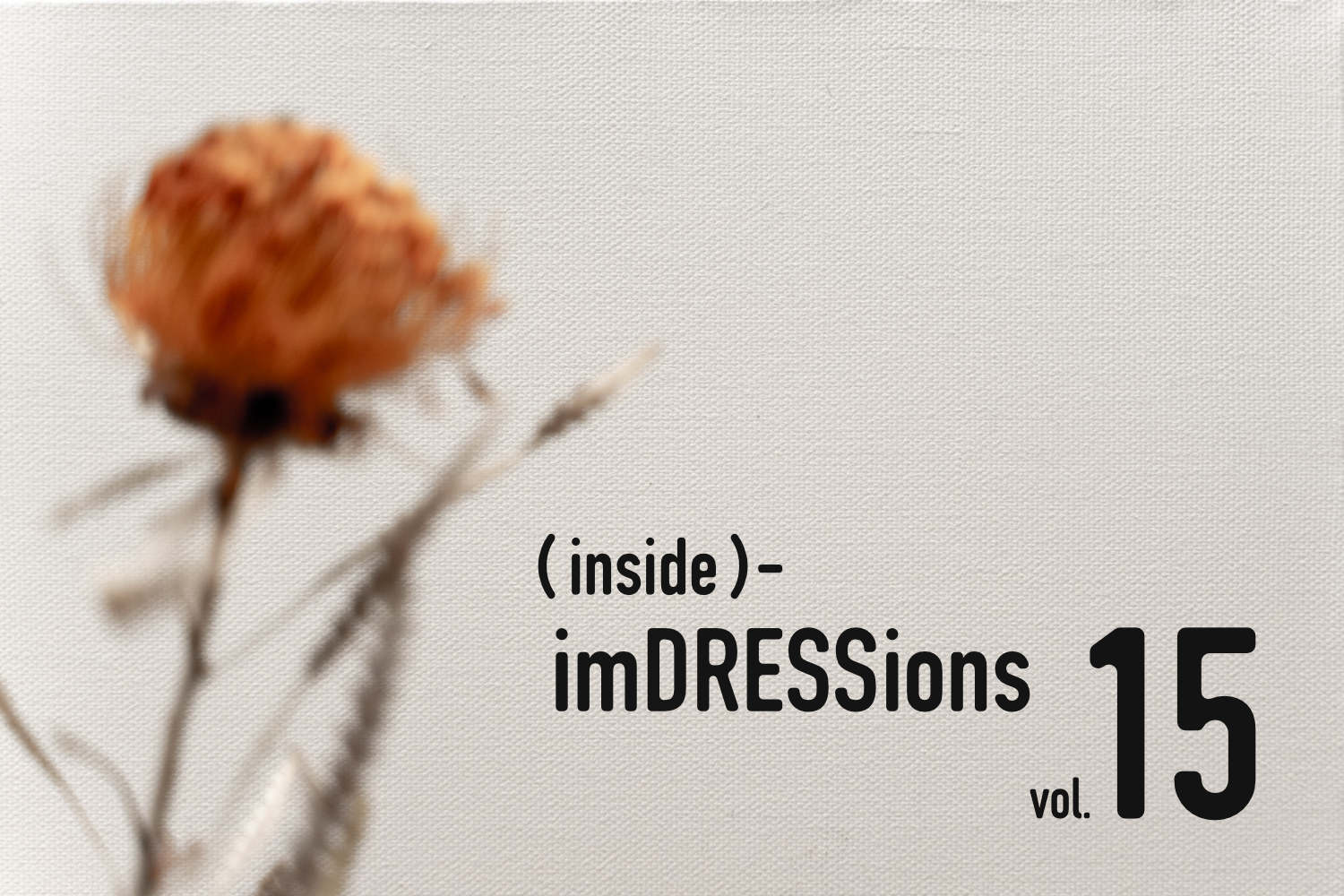 『(inside)-imDRESSions』vol.15-3年目。